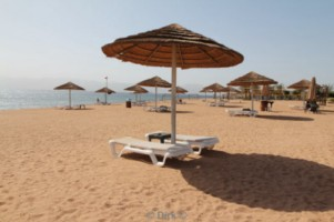 beach radisson blu tala bay resort jordan aqaba